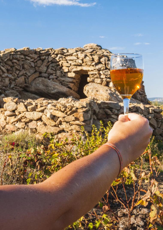 Vin et capitelle - Crédit Lionel Moogin - Agly Tourisme